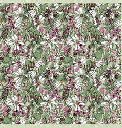 wildflower daisies and pink flowers summer vector image