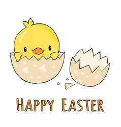 Cute little yellow chick in cracked eggs and egg vector