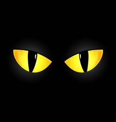 Eyes of a black cat vector image
