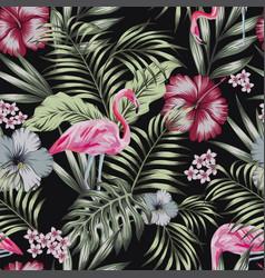 Flamingo night jungle seamless black background vector