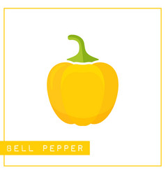 isolated yellow bell pepper memory training card vector image