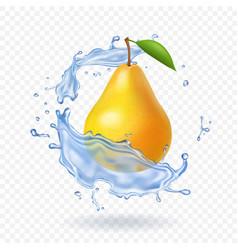 Pear realistic fruit vector