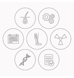 Phlebology trichology and DNA icons vector image