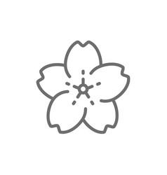 Sakura flower line icon vector