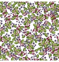 Seamless pattern blue and red Berry plants vector image
