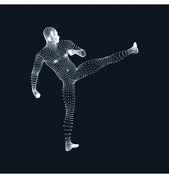 Fighting Man 3D Model of Man Human Body Model vector image vector image