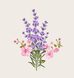 lavender and sakura flowers vector image vector image