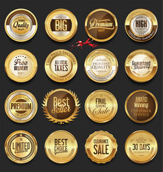 luxury retro badges gold and silver collection vector image vector image