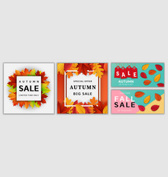 autumn sale fall banner set realistic style vector image