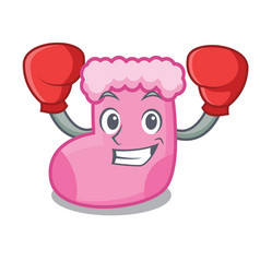 boxing sock character cartoon style vector image