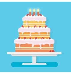 Happy Birthday cake with candles vector