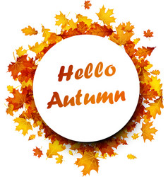 hello autumn background with golden leaves vector image