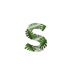 logo letter s tropical leaves vector image