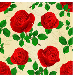 seamless texture buds red roses with leaves vector image