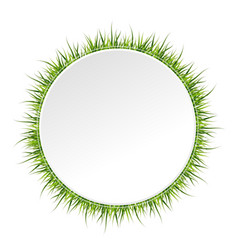 spring banner with grass border around vector image