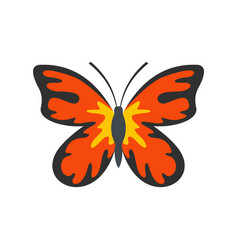 Summer butterfly icon flat style vector
