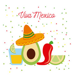 Vive mexico avocado hat chili tequila and lemon vector