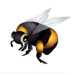 bumblebee in flight vector image