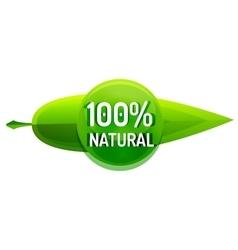 Green eco concept - natural vector image vector image