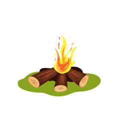 burning bonfire on green grass firewood and hot vector image