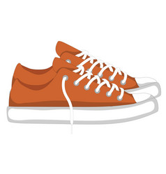 Fashionable woman s shoes snickers isolated on vector