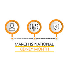 National kidney month concept heath care vector