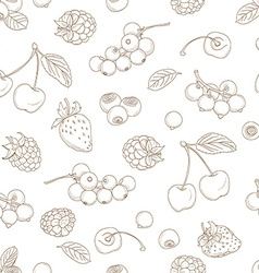 Outline hand drawn seamless berry pattern flat vector