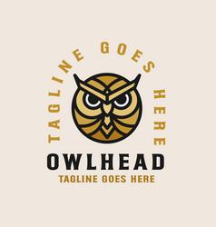 owl head logo template vector image