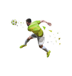 soccer player best of kicking ball vector image