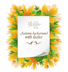 background with autumn leaves and place for text vector image