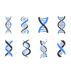 dna helix patterns colorful vector image