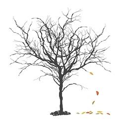 Autumn tree Fall Season concept vector image