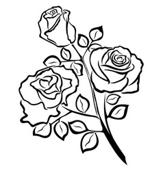 Black outline of rose flowers vector