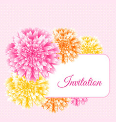 chrysanthemum floral background vector image