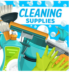 cleaning supplies household clean home equipment vector image