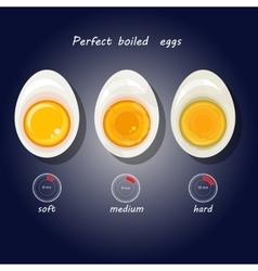 hard-boiled eggs vector image
