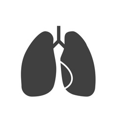 lungs related icon vector image
