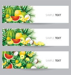 Mixed Tropical Fruits Banner vector image