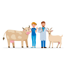 vets and healthy farm animals - cow and goat vector image