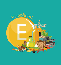 Vitamin e or tocopherol food sources vector