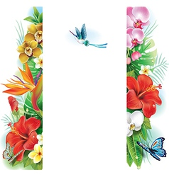 Banner from tropical flowers and leaves vector image vector image