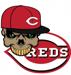 reds baseball vector image vector image