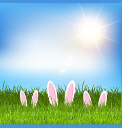 Easter bunny ears hidden in grass vector