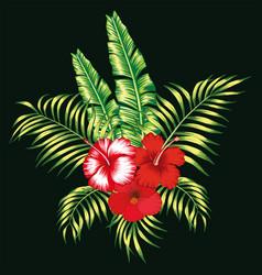 Floral tropical composition black background vector
