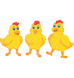 funny three chicken cartoon posing with smile vector image