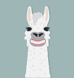 happy alpaca smile vector image