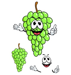 Juicy green grape fruit in cartoon style vector image