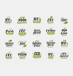 set eco food friendly and organic labels vegan vector image
