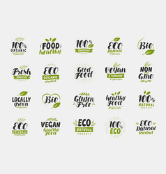set of eco food friendly and organic labels vegan vector image