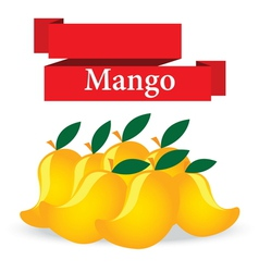 fresh mango on white background vector image
